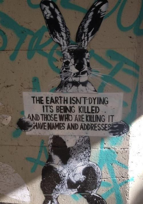the earth is nog dying, it's being killed. and those who are killing it have names and addresses.