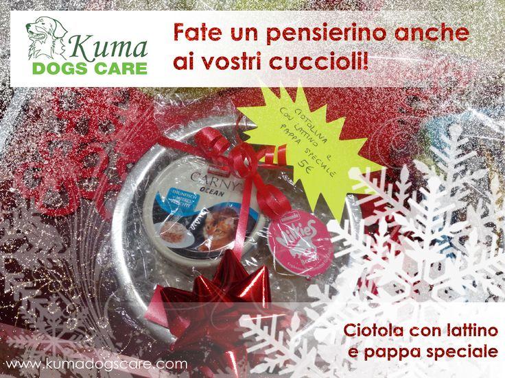 Pacchetti natalizi a partire da 5 euro per i vostri amici pelosetti!   Fate un pensierino anche ai vostri cuccioli!  Ciotola gatto con pappa speciale e lattino  http://kumadogscare.com/ Seguici sul nostro shop online www.kumadogscare.com Copyright 2016 - Kumadogscare Graphics and movie edited by: Pigikappa.com  #cani #toilettatura #kuma #dogs #shop #kumadogscare #trasportino #mesh bag #borsa #gatti #cats #pets #dogline #sherlockbag #eco-pelliccia #giochi #ciotola #osso #tazza #snack