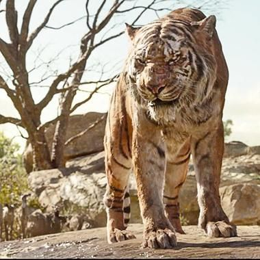 Movies: Mowgli meets Shere Khan in new The Jungle Book clip