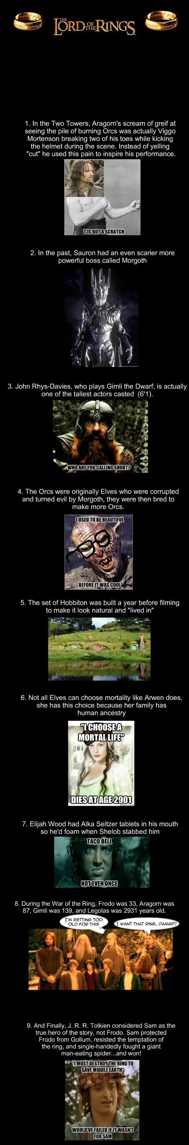 Neat facts about LotR. Glad Tolkien really felt Sam was the hero of the story.