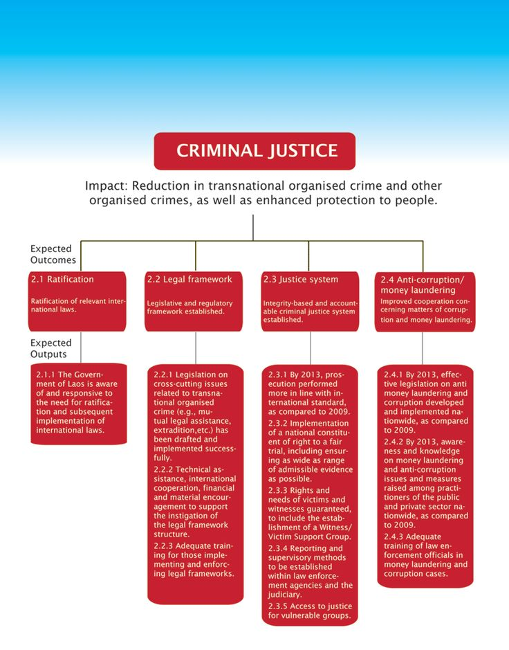 comparing criminal justice systems As for the adult justice system, it should be said that defendants in the criminal justice system are put on trial, which is based largely on legal facts in such a way, the wide gap between juvenile and adult justice system can be traced because the defense in adult justice system is grounded on sheer facts, whereas in juvenile justice system.