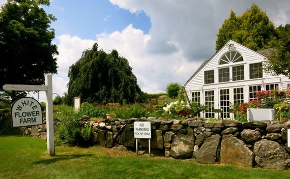 White Flower Farm, Litchfield, CT | 15 Secret (and Not-So-Secret) Spots In Connecticut's Northwest Corner