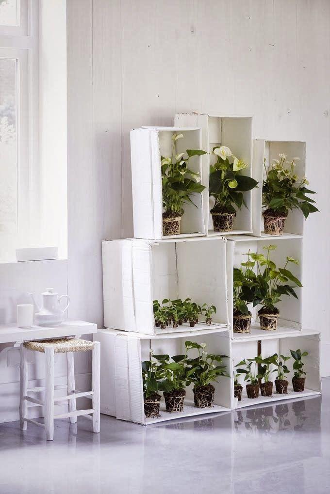 post-kwiaty we wnętrzach