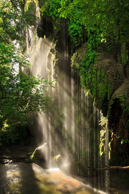 Colorado Bend State Park, Gorman Falls in the Morning, state of Texas