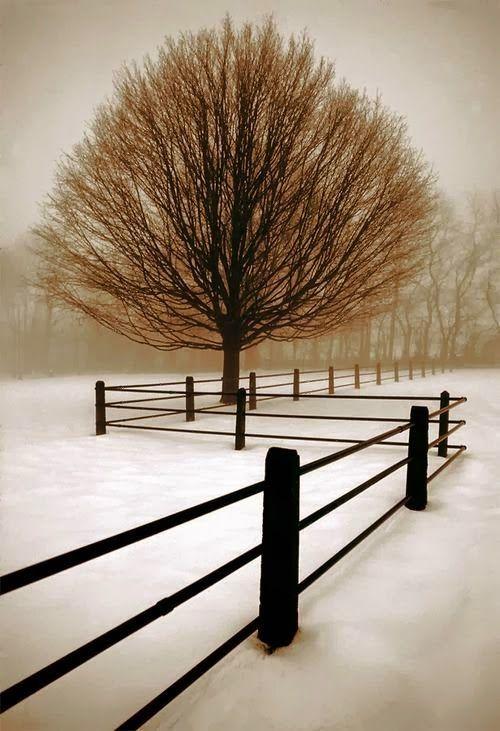 Winter Geometry, Pennsylvania