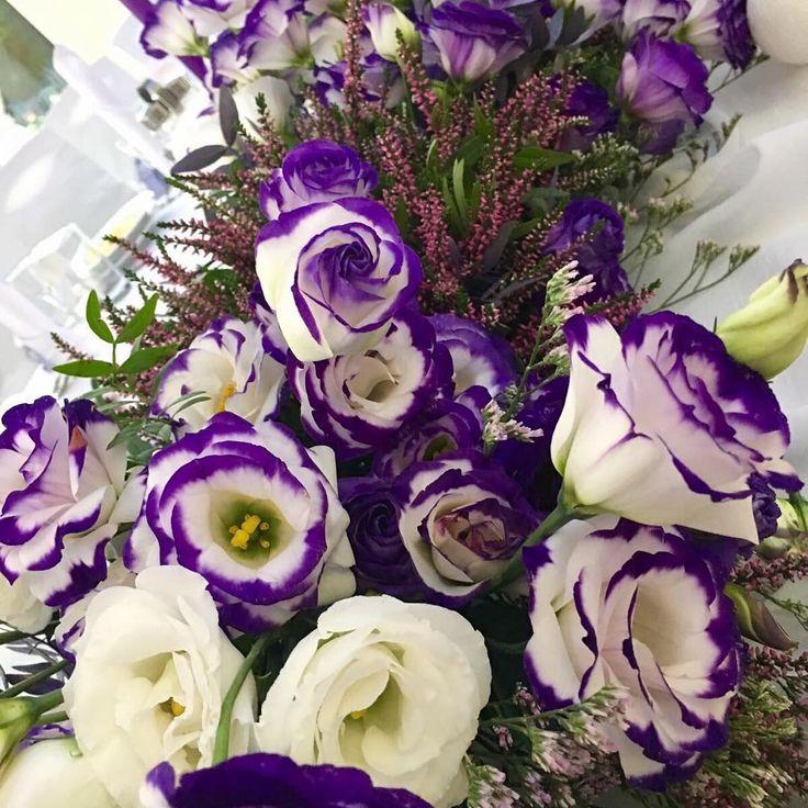 """Polubienia: 22, komentarze: 1 – Białe Kwiaty (@bialekwiaty) na Instagramie: """"💜💜💜 Wrzosowe przyjęcie weselne Oli i Macieja 💜💜💜 #wrzosnawesele #wrzosnaweselu #wrzosowelove #wrzos…"""""""