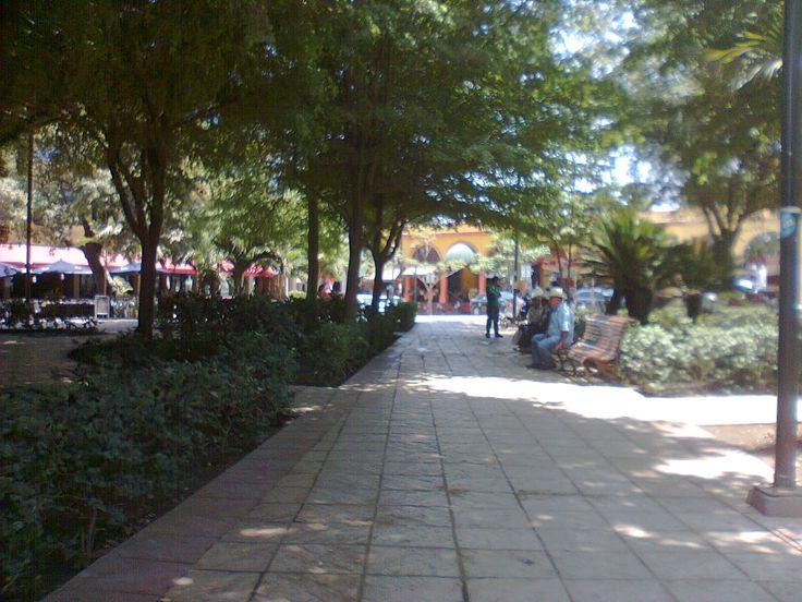 Plaza central de Culiacan Sinaloa México
