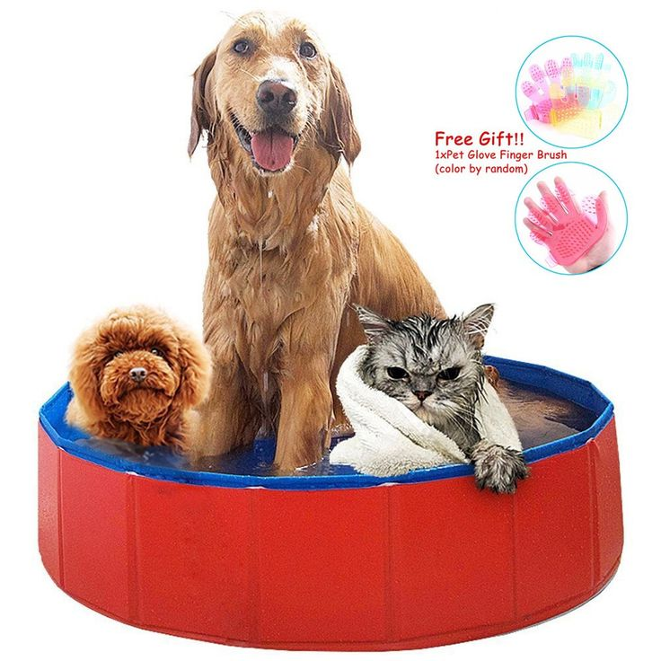 "AceZone Collapsible Pet Bathing Tub Bathtub Wash Tub Cats Dogs Swimming Pool Water Pond …. ✿STURDY&DURABLE MATERIAL:Constructed from extra-tough and safe PVC material made for long lasting use, Perfect dog toy or pet toy for your animal,safe quality PVC waterproof cloth,the corners well sealed, will not leak case. two sizes are available: 32""x32""x8"" inches,3.3lb;47""x47""x12""inches,11lb. ✿SIMPLE USE: Simply fill with water and open sealed drain to empty before storage or transportation...."