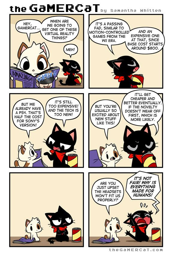 It's hard being a gamer cat in a gamer human world.