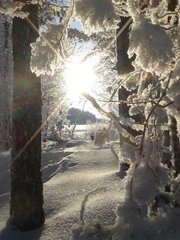 National Parks - SaimaaHoliday Oravi