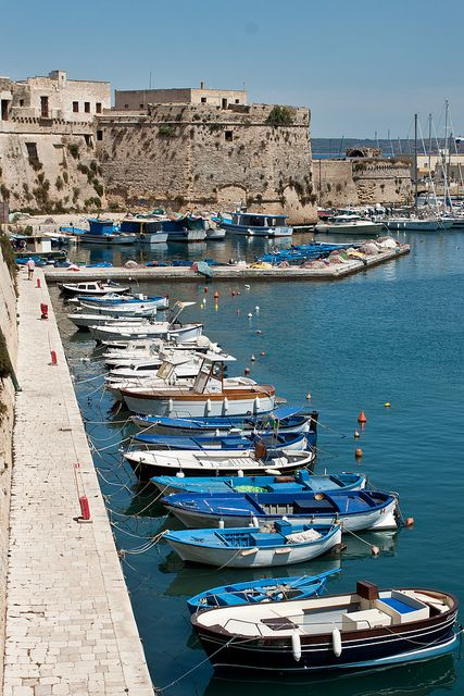 Gallipoli, Apulia, Italy. About 40 minutes from Lecce. We enjoyed this town so much.....especially the fishermen and their market. Had some great seafood meals here with our special friends.