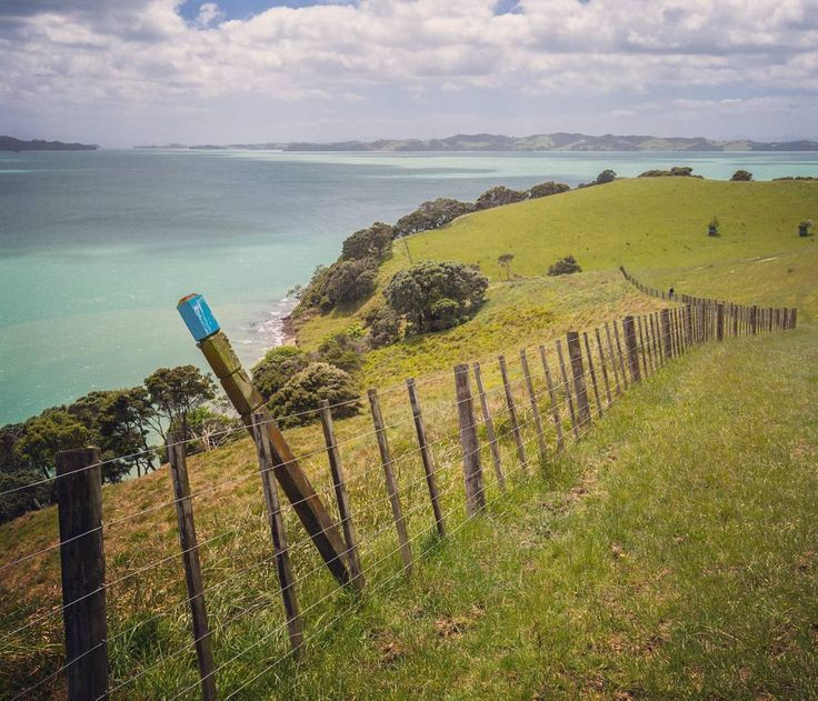 Follow the blue markers to lands end. We've driven along Maraetai Coast Road south of Auckland several times and never really noticed the turnoff to Duder Regional Park. Turns out we've been missing a really scenic little walk to an old Pa site (fortified Māori settlement) at the end of Whakakaiwhara Point which juts out into the Tamaki Strait.