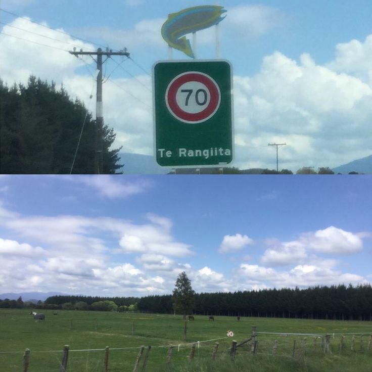 Te Rangiita, New Zealand