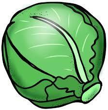 Resultado de imagen para cabbage animation
