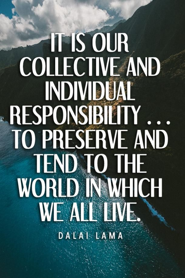 40 Best Environmental Quotes To Inspire You To Do Your Part To Save