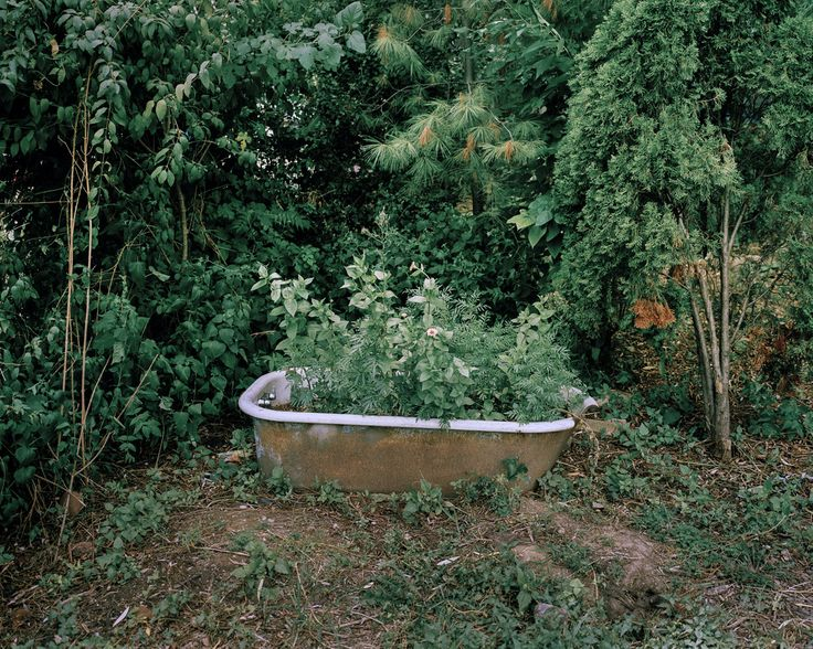 Modern gardeners visualised by Jan Brykczyński
