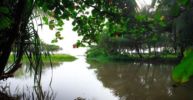 Kadappuram er det perfekte sted til fuldkommen afslapning. Når dagens ayurveda-behandling og yogaklasse er forbi, kan du gå lange ture på den jomfruelige Nattika-strand, spejde efter delfiner, der leger i brændingen, eller tage dig en svømmetur i bølgerne.