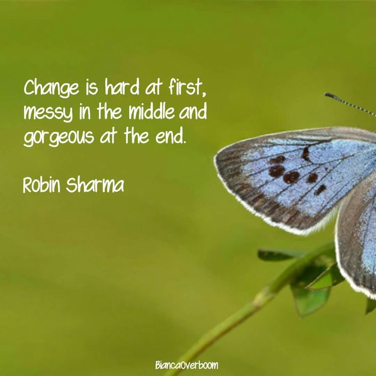 #Change is hard at first, messy in the middle and gorgeous at the end.