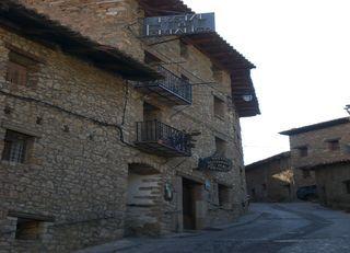 Escapada a buscar setas, en Linares de Mora, Sierra de Gudar, Teruel