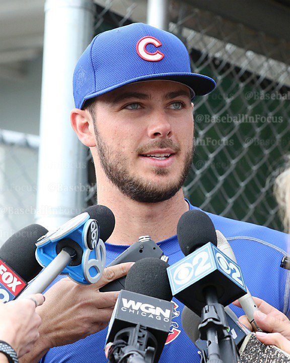 15 Best Images About Chicago Cubs Party On Pinterest: 1621 Best Images About Cubbies Fan Forever On Pinterest