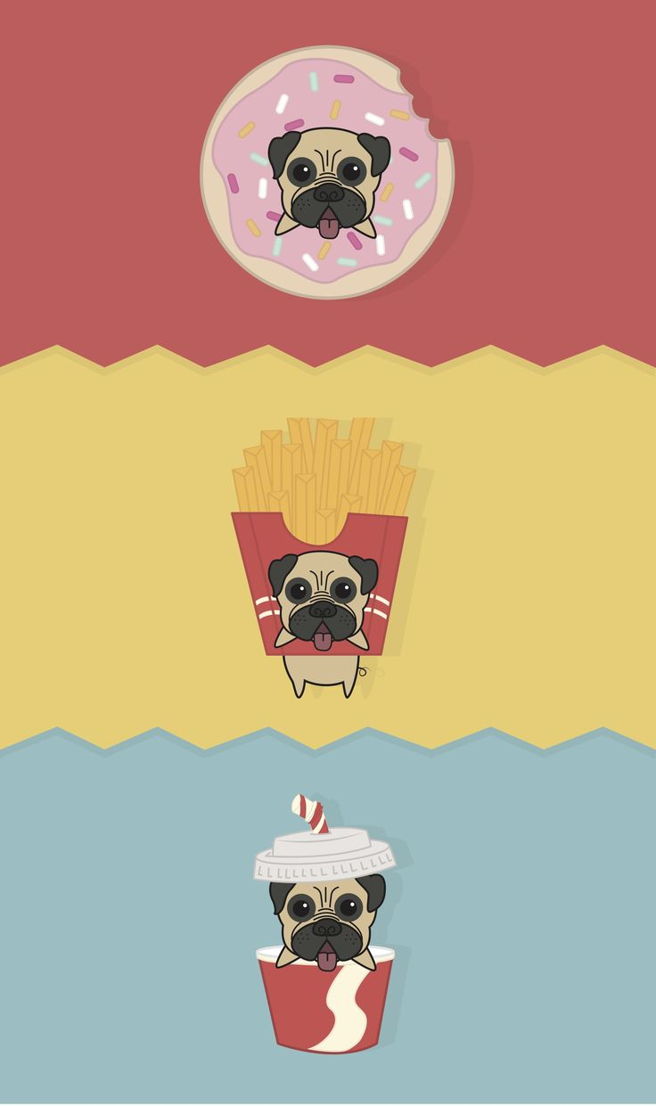 #dog #pug #character #design #illustration