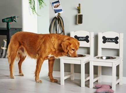 Who let the dogs out? This diy feeding station makes your animal friend and helper happy and well-fed! #Bosch #Home #Makeityourhome /// Tolle Bauanleitung wie ihr einen Fressnapf für eure Vierbeiner ganz einfach selbst bauen könnt!
