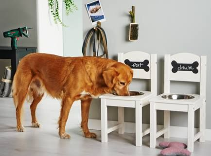 Who let the dogs out? This diy feeding station makes your animal friend and helper happy and well-fed! #Bosch #Home #Makeityourhome /// Great building instructions how you can easily build a bowl for your four-legged friends!