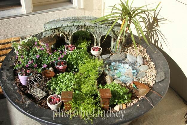 """Love the""""palm trees"""" in this mini garden"""
