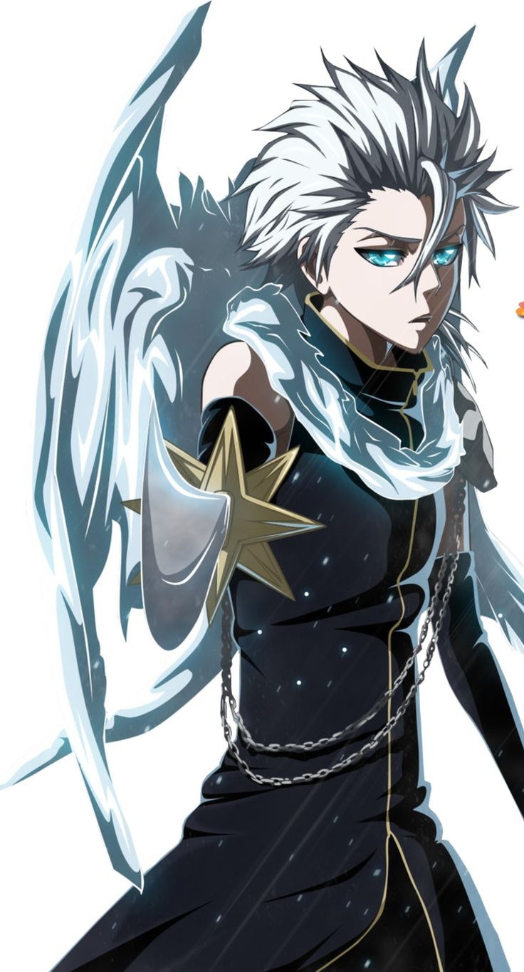 Toshiro Hitsugaya, the best captain by far