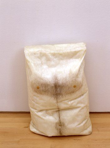 SFMOMA   OPEN SPACE » Blog Archive » A Queer Tour of the Permanent Collection: Robert Gober