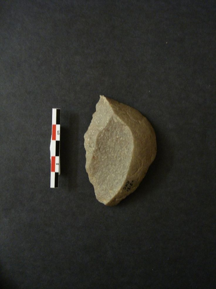 Naturally backed knife on a quartzite flake. The flake comes from a water worn pebble and its natural surface across the distal end and right edge where it forms natural backing to the opposite 'knife' edge. The low-angled, straight left edge is formed by the remnants of 2 scars and is unmodified. Small plain butt. Fresh