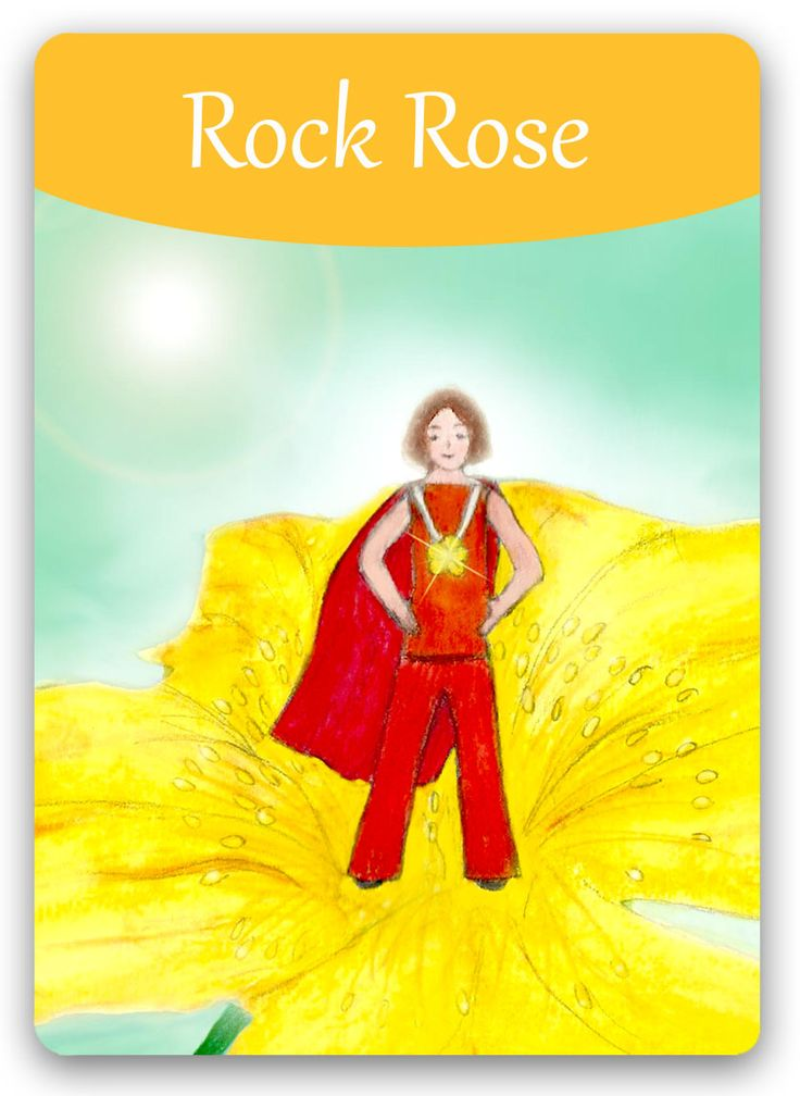Bach Flower: Rock Rose - when fear and terror overcome you ... Rock Rose helps you to discover the hero within you!