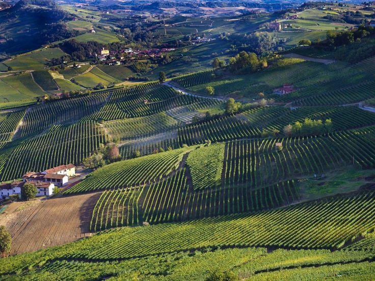 #langhe #piemonte #italia #unesco