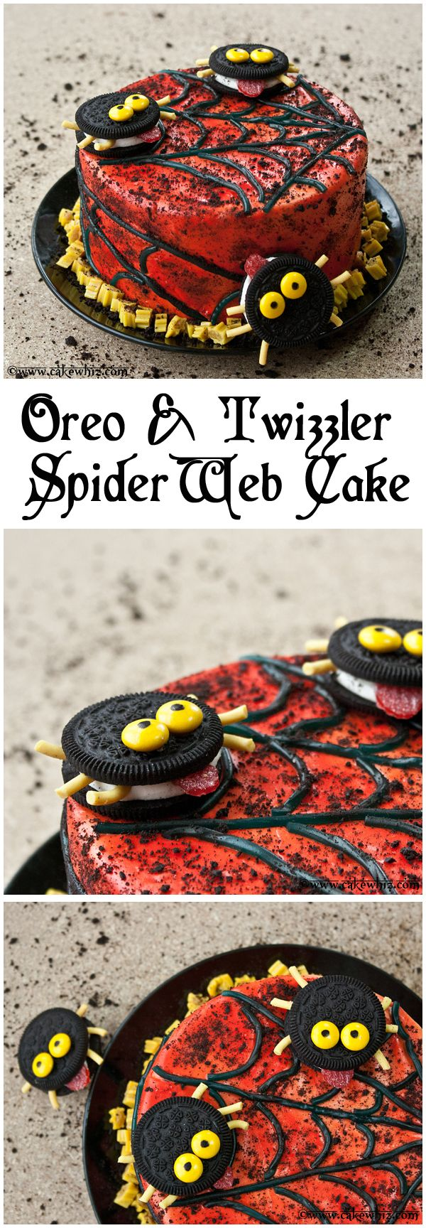 Fun HALLOWEEN CAKE with Oreo spiders and Twizzler spider webs. So easy that kids can help out too :) From cakewhiz.com