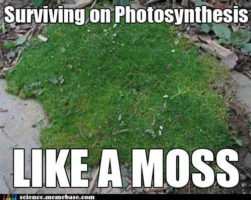 nerd humor Biology :)