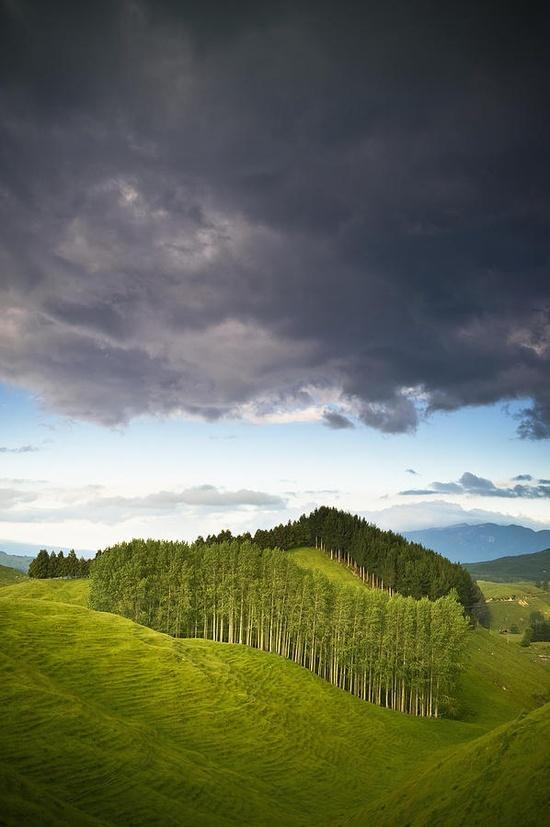 A Lush Green Landscape...