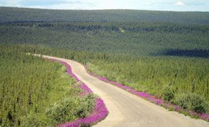 Dempster: Highway to the Arctic | Yukon: Larger Than Life - Yukon, Canada Vacations, Travel; Tourism in the Yukon Territory