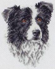 border-collie-cross-stitch-148