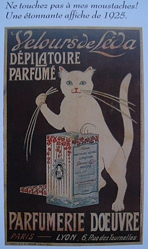 Cats in Art, Illustration and photography: Women's mustache depilatory advertising poster (French).