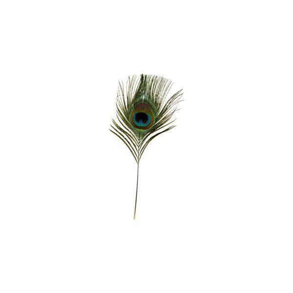 Хан Надежда — альбом «Скрап наборы / Винтаж / Glamourous Peacock» на... ❤ liked on Polyvore featuring peacock