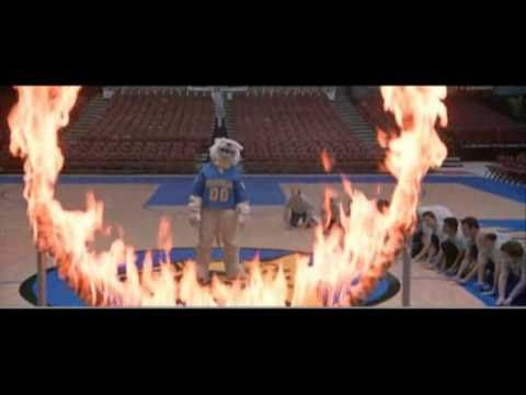 "Will Ferrell's Frank ""The Tank"" Ricard fails to jump through a flaming hoop. Hilarity ensues. ""LET'S GO, COUGARS!!!"""