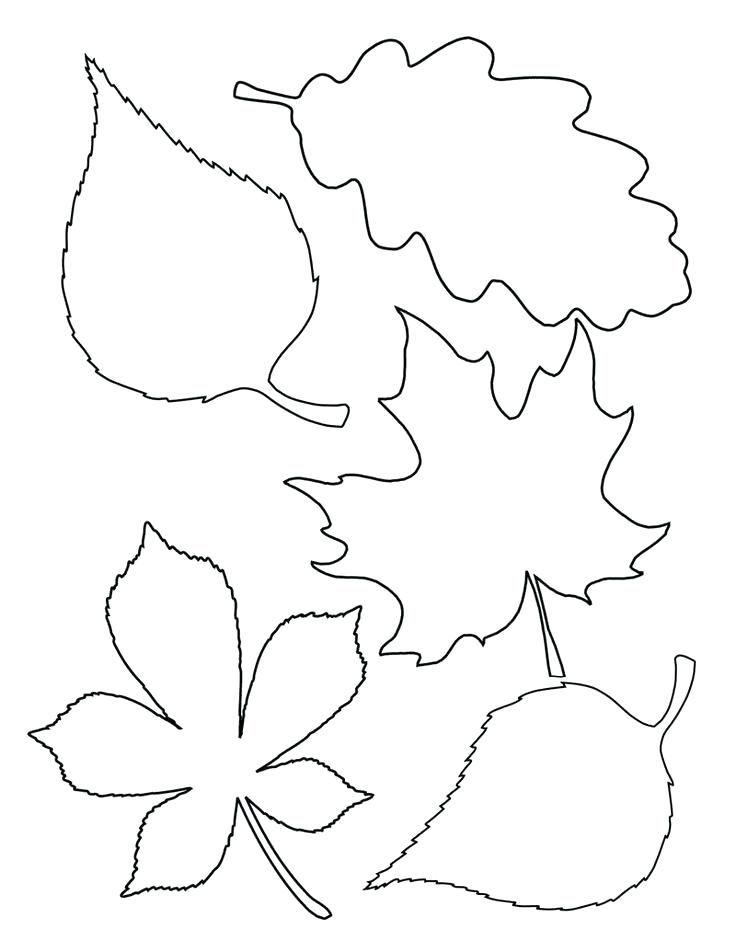leaf stencils printable fall leaves templates printable best leaf