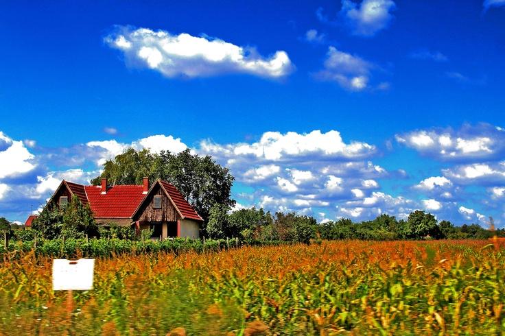 Hungarian Farmhouse   mathieu's pictures