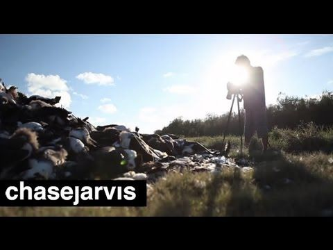 ▶ Chris Jordan on The Midway Project | ChaseJarvis - YouTube. Where does your littered trash go? Into the middle of the pacific where it is consumed by wildlife. This clip is amazingly done.