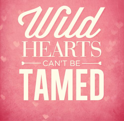 Wild Love Quotes: 9 Best I Love My Followers Images On Pinterest