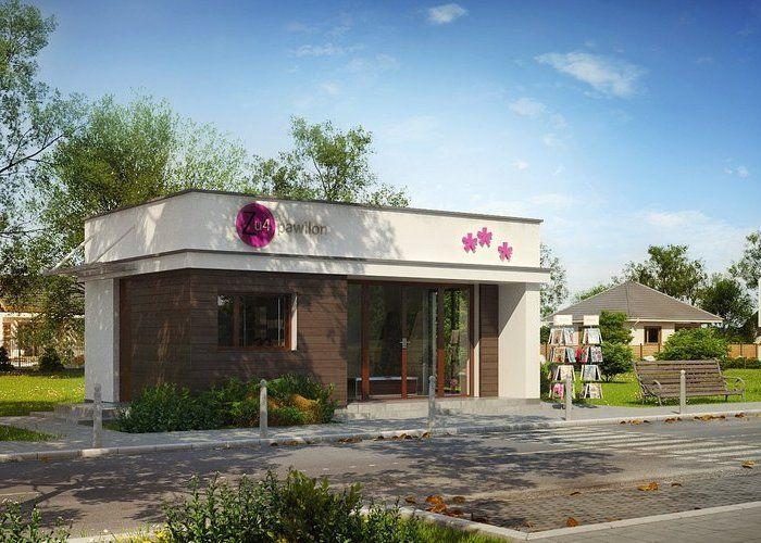 Projekt domu: Zu4 - Widok od frontu