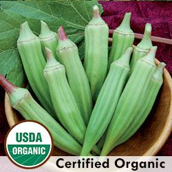 Heirloom Okra Seeds - Organic & Non-GMO Okra | Seed Savers Exchange