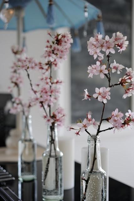 Vil ha Kirsebærtre i hagen!