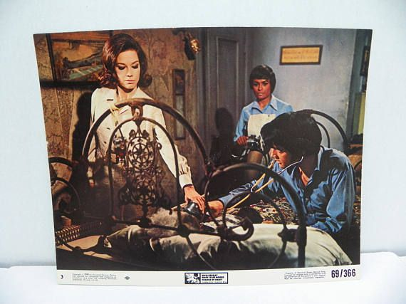 Elvis Presley 1969 Movie Lobby Card  Change of Habit  8 X 10