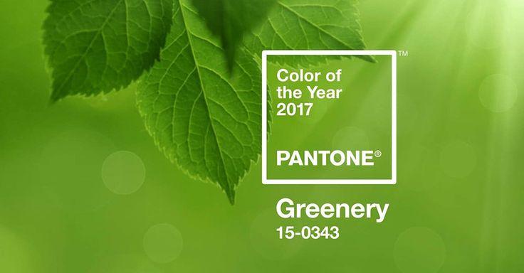 Интерьер в зеленом цвете? Мир сходит с ума по «зеленому»: здоровый образ жизни, живые растения – как главный декор, натуральные продукты, побег из городов на природу, здоровое отношение к себе. Не зря Институт Pantone назвал один из оттенков зеленого цветом 2017 года.